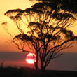 t_sunset